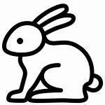 Rabbit Icon Animal Animals Conejo Symbol Kaninchen