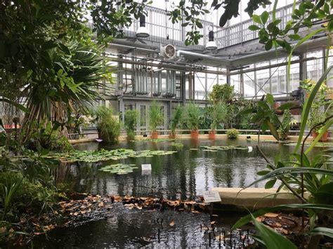 Botanischer Garten Leipzig Parken by Ein Spaziergang Durchs Paradies Botanische G 228 Rten Mit