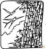 Bamboo Coloring Tree Birds Drawing Trees Printable Supercoloring Clipart Getdrawings Coloringpages101 Categories sketch template