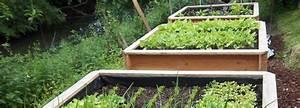 Bac Bois Potager : bac en bois pour jardin teciverdi ~ Melissatoandfro.com Idées de Décoration