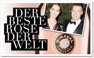 Bester Schließzylinder Der Welt : bringst du bester rose der welt ~ Buech-reservation.com Haus und Dekorationen