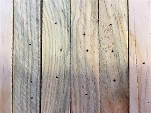 Holz Für Möbelbau : welche schleifmaschine brauche ich f r den m belbau holz und leim ~ Udekor.club Haus und Dekorationen