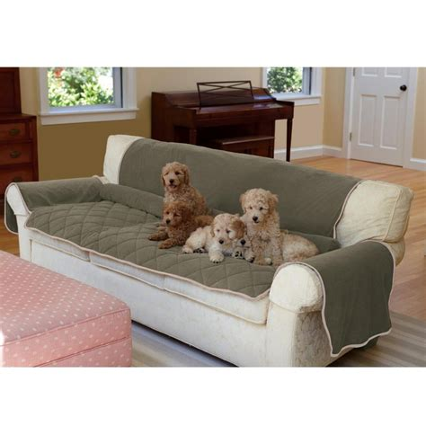 best sofa for dogs the 25 best ideas about dog couch cover on pinterest
