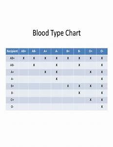 Human Blood Types Chart Sample Blood Type Chart Free Download