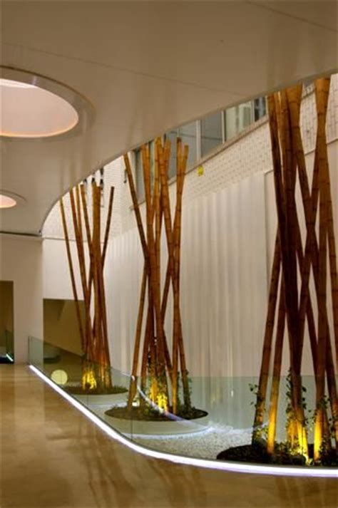 images  bamboo  pinterest expo