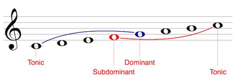 The first note of the scale, and in solfege (movable do) in a major key it is the note do. Mandolin Theory - Scale Degrees