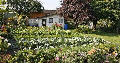 Kleingarten, Schrebergarten  Pflanzen, Bilder Und Ideen