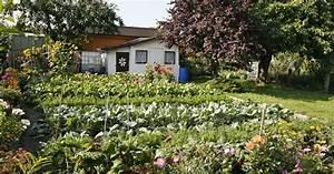 Shop Mein Schoener Garten De : kleingarten schrebergarten pflanzen bilder und ideen mein sch ner garten ~ Orissabook.com Haus und Dekorationen