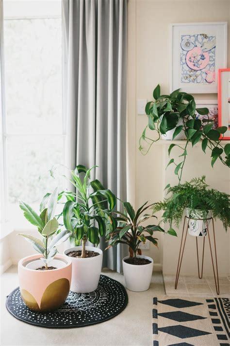 plante pour chambre à coucher visite une maison colorée et pleine de vie cocon de