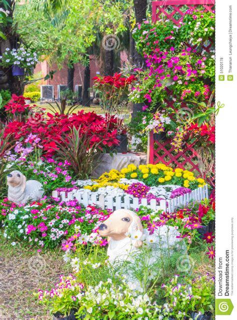 beautiful flower garden stock photo image of gardening