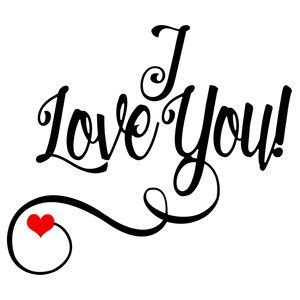 love  love crap silhouette design love