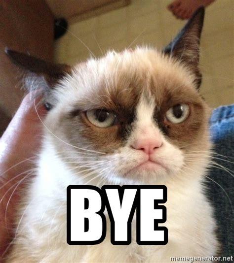 Angry Cat Meme Generator - bye mr angry cat meme generator