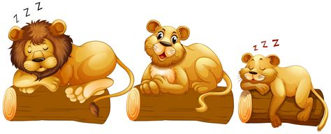 lion family   log   vector art stock