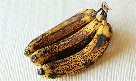 kitchen compost bin kitchen compost what to do with overripe bananas delightful adventures