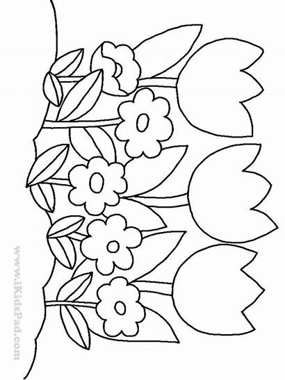 Coloring Flower Pages Flowers Printable Tulip Row