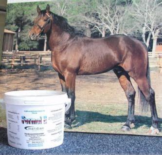 vitamin  und selen fuer pferde kaufen bei meridian pferd