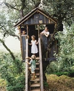 Baumhaus Für Kinder : baumhaus bauen f r kinder mit einer treppe mitten im wald baumhaus bauen schaffen sie einen ~ Orissabook.com Haus und Dekorationen
