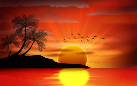 sunset sea paradise tropical island palms silhouette birds