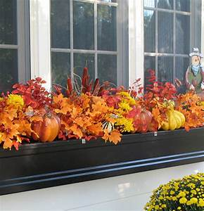 Fall Window Box Ideas Make Your Window Boxes Beautiful in