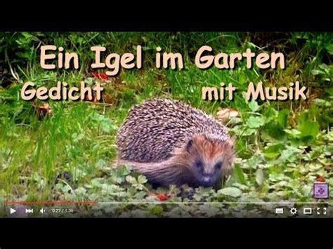 Herbst Garten Gedicht by Fg139 Ein Igel Im Garten Gedicht Mit Musik Silent
