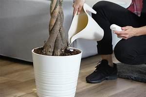Smart Home Ideen : smart home bilder ideen couchstyle ~ Lizthompson.info Haus und Dekorationen