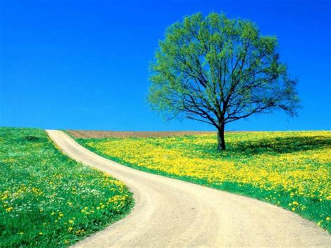 Background Images High Resolution by Awesome Nature Background High Resolution Images