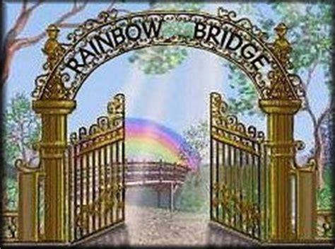 rainbow bridge poem  pet loss bereavement poem