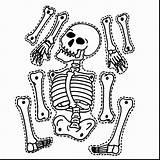 Skeleton Coloring Pages Preschoolers Halloween Getdrawings sketch template