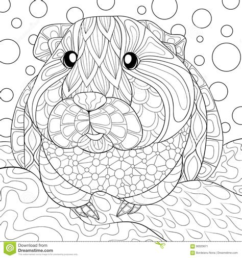 adult coloring page guinea pig stock vector illustration