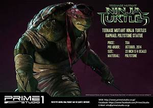 Quotes about Te... Tmnt Ninja Quotes