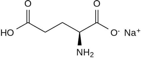 glutamate de sodium cuisine msg monosodium glutamate or bad