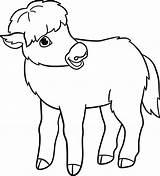 Yak Coloring Boyama Illustrations Bebek Clip Animal Returned Zero Sorry Results Istockphoto sketch template