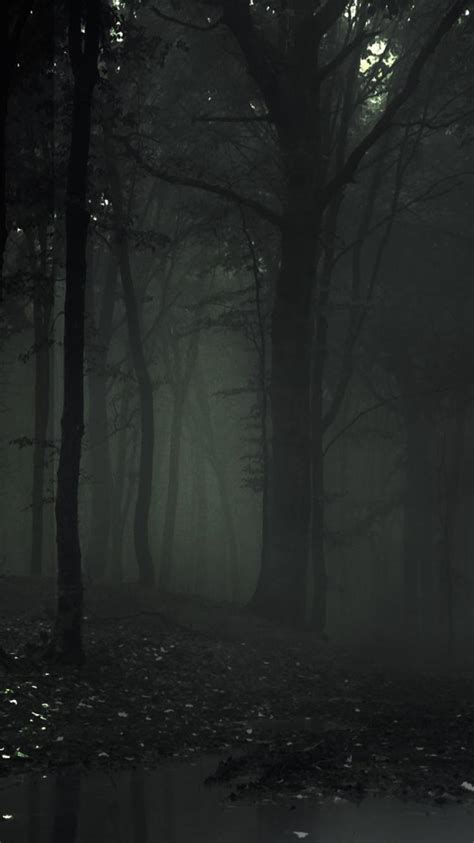 man slenderman  arrival forest  pages wallpaper