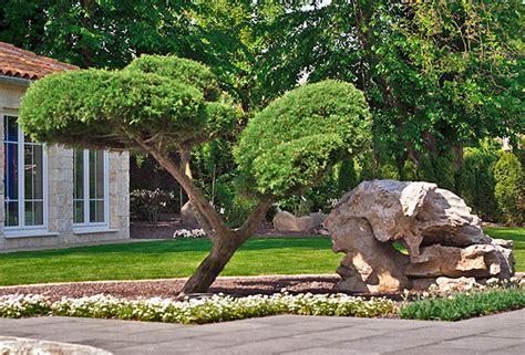 Moderne Und Japanische Gärten