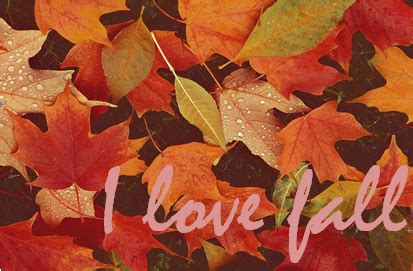 Prettyrandomthings I Love Fall Tag
