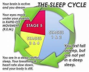 Sleep Cycle App Review - Wake Up Feeling Good
