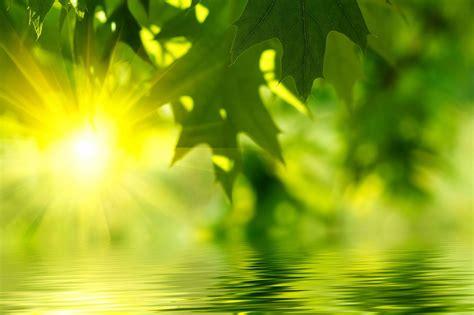 Fresh Wallpaper Desktop by Hd Desktop Images Amazing Views Green Clean