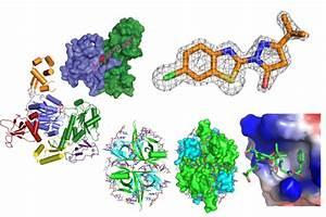 Structural Biology  U2013 Biomolecular Chemistry  U2013 Uw U2013madison