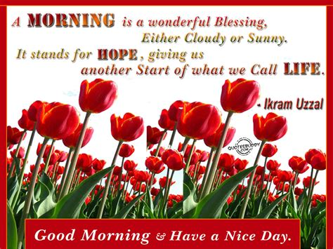 Good Morning Quotes Graphics
