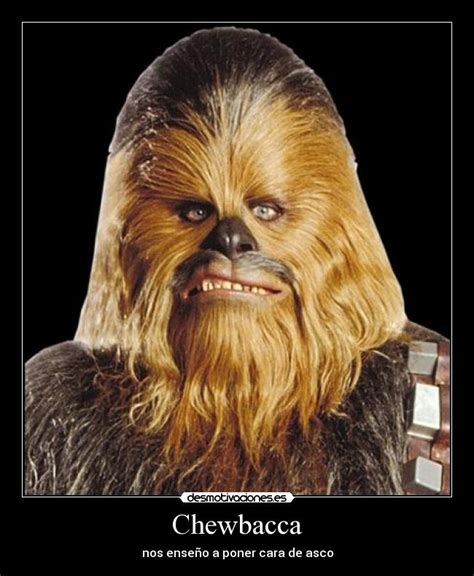 Chewbacca Meme - chewbacca meme pictures to pin on pinterest pinsdaddy