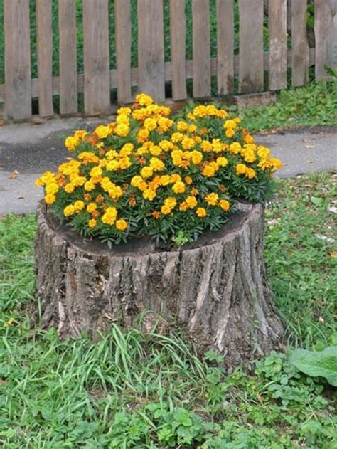 Tree Stump Decorating Ideas - recycling tree stumps for yard decorations to remove tree