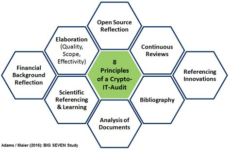 software audit review wikipedia