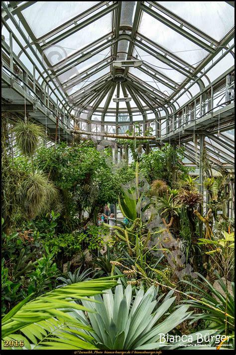 Botanischer Garten Berlin Bezirk by Botanischer Garten Bezirk Steglitz Zehlendorf