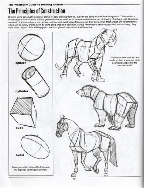 drawing  animals     ayoqqorg