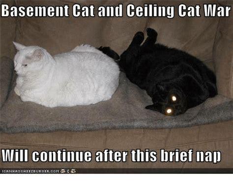 Ceiling Cat Meme 25 Best Memes About Basement Cat Basement Cat Memes