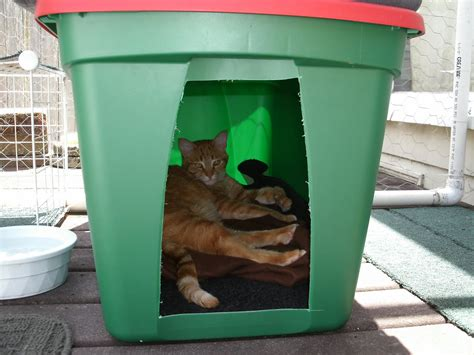 cat shelters the best cats how to make a winter shelter for an