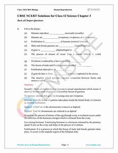 Classnotes  Cbse Biology Notes For Class 12 Pdf