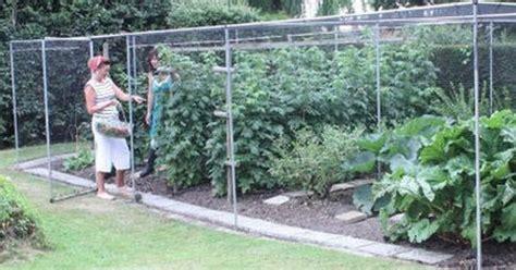fruit cages arborpergolatrellisobeliskenclosure