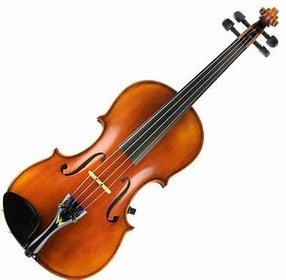 Electric Acoustic Wood Concert Strings Violins Violin