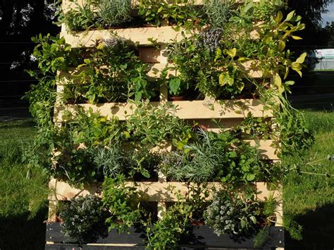 vaso per orto orto in vaso e giardino giardinaggio mobi